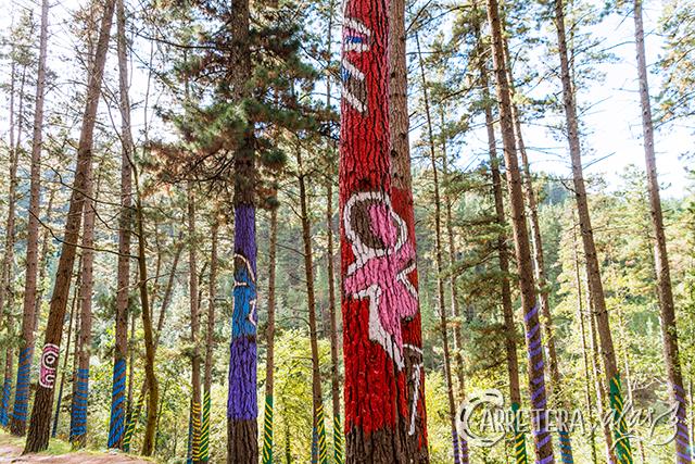 bosque-pintado13